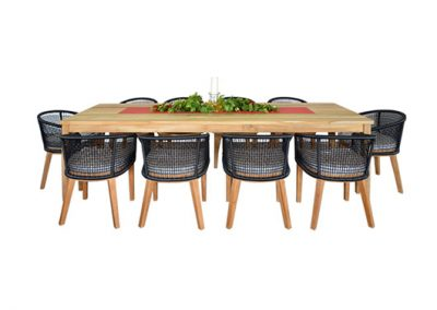 Cicada dining setting 10 seater, 290x100cm table with cicada armchairs