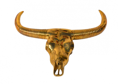 BRASS BUFFALO Head